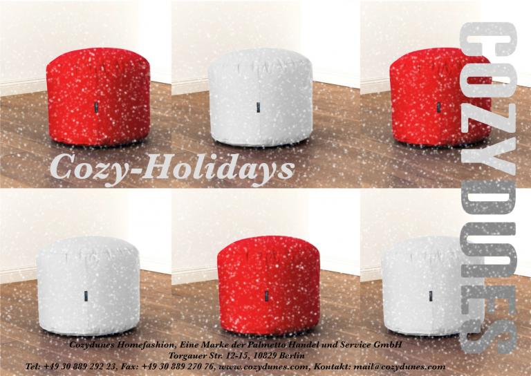 Cozydunes-Weihnachtspostkarte-2015-768x544